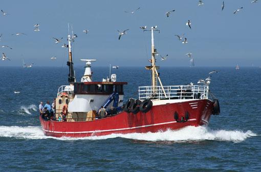 MS Albatros